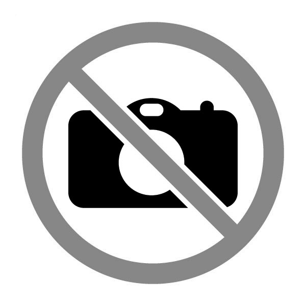 Seongwoong Lee Sun-shin